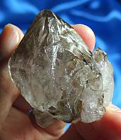 Charming Old Soul Smoky Elestial Scepter Quartz with Enhydro