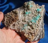 Neon Turquoise Aurichalcite Flowers with Hemimorphite on Glittery Matrix