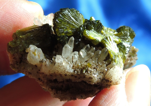 Gorgeous Jeweled Gemmy Epidote in Pale Smoky Quartz