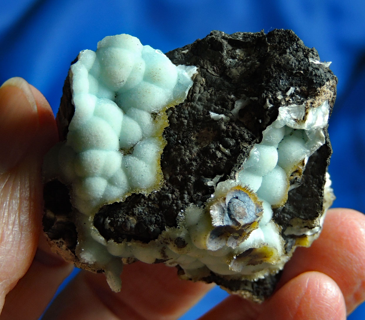Beautiful Baby Blue Botryoidal Hemimorphite