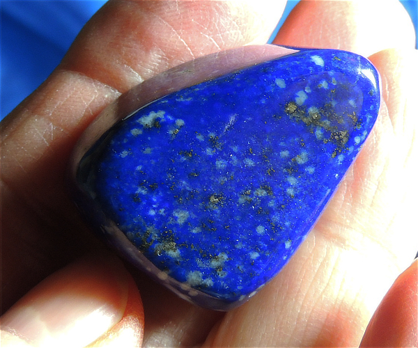 AAA Vivid Polished Electric Blue Lapis Lazuli with Pyrite - Afghanistan