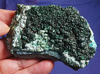 Unusual Emerald Green Drusy Botryoidal Malachite on Chrysocolla and Basalt