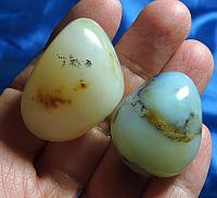 Lush and Rich Andean Opal Pair - Celestial Blue-Green and Rich Gold and White