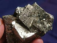 Magpie Special – Gleaming DT Gold Pyrite Cluster - Kosovo