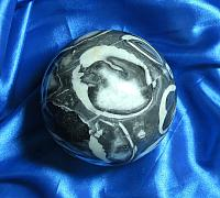 Extra-Large and Stunning 'Shell Fossil Jasper' Sphere