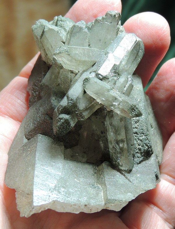 Glittering Light Smoky Swiss Quartz Cluster Partially-Cloaked with Green Chlorite