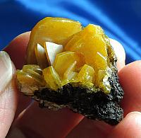 Colorful Golden Blades of Wulfenite